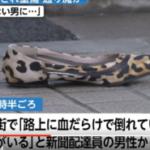 【速報!】横浜の通り魔事件で71歳の男に逮捕状!杖をつい犯人は近江良兼(無職)